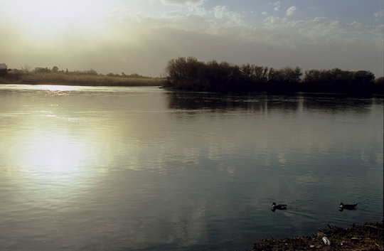 euphrates-river
