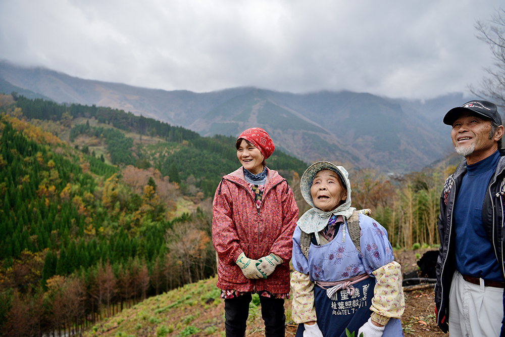 宮崎県椎葉村の焼畑農家