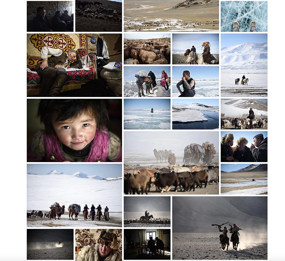 モンゴルの写真